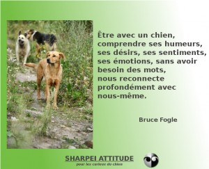 citation Bruce Fogle
