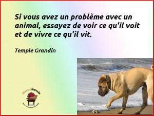 Grandin-citation