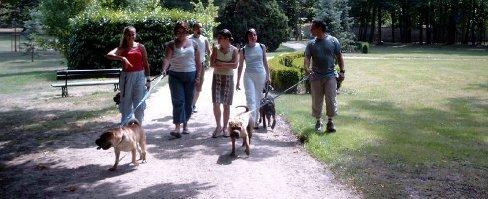 Le chien : un lien social