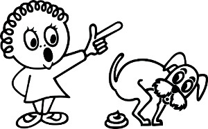 """Surveillez attentivement votre chiot pour éviter les """"accidents""""."""
