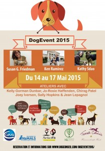 affiche dog event