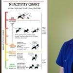 Chien réactif et BAT : l'interview de Grisha Stewart